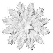 Ceiling Rosette - UR013